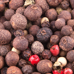 Mixture of  Peppercorns