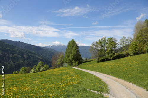 canvas print picture Wanderweg in der Steiermark