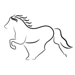 Isländer ohne Reiter