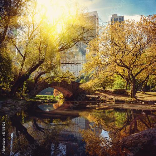 Central Park pond and bridge. New York, USA.