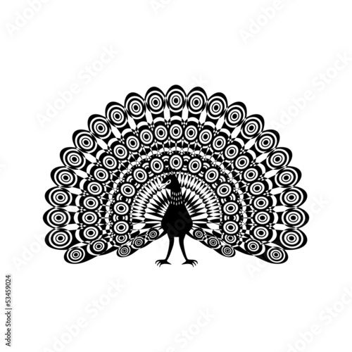 Illustration of a beautiful peacock