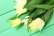 Beautiful white tulips on color wooden background