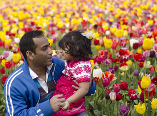 Daddy and daughter Playing at Tulip Garden