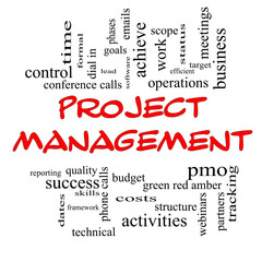 Project Management Word Cloud Concept in Red Caps