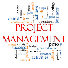 Project Management Word Cloud Concept