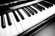 Piano keys - 53465608