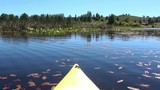 Kayak moving fast in blue lake water on sunny day with birdsong