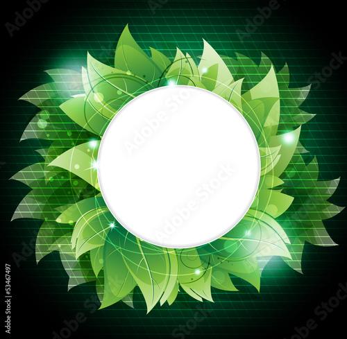 Dense green foliage