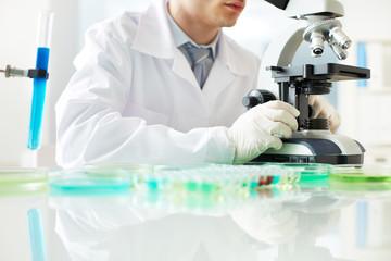 Microscope research