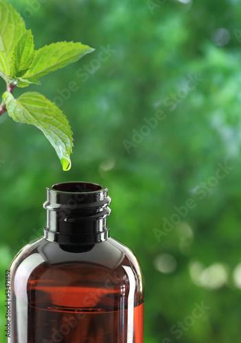 Drop falling of mint leaf in an essential oil bottle
