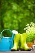 Outdoor gardening tools - 53474201