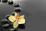 Black Zen stones and orchid on calm water background