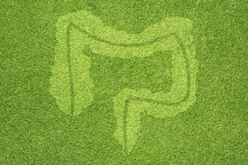 Intestine icon on green grass texture and background