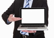 Happy Mature Businessman Pointing On Laptop