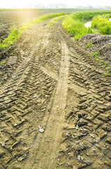 Tractor's traces in a country lane color image