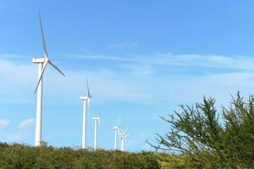 Wind turbines on the Guajira Peninsula