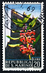 Postage stamp San Marino 1967 Purple Nettle and View of Mt. Tita