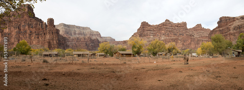 Havasupai tribe village