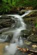 Fototapeten,flüsschen,cascade,umwelt,wasserfall