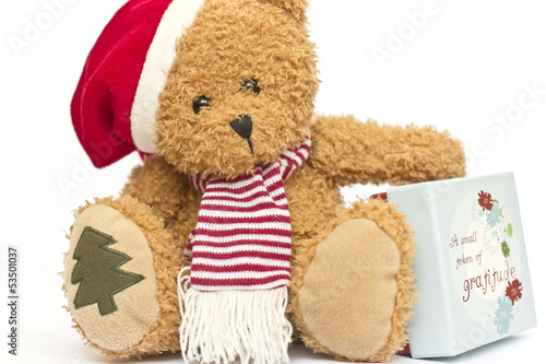 teddy bear in a red cap with gift box