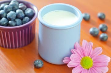 blueberry and yogurt