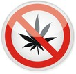 panneau feuille cannabis