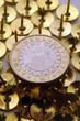 Infernal euro