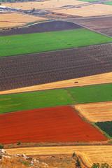 Agriculture carpet