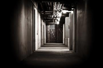 Spooky cellar