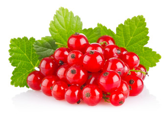 red currant with green leaf
