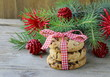 Christmas cookies with red ribbon and green fir