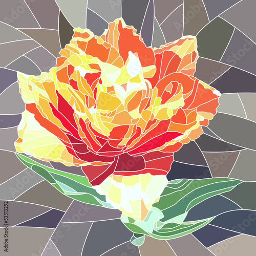 Vector illustration of orange tulip.