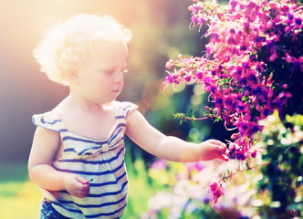 toddler picking flowers
