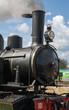 Locomotive à vapeur en Baie de Somme