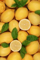 Zitronen Hintergrund