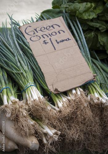 Green Onions