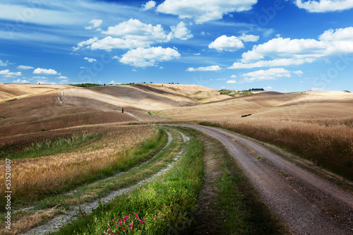 Road between the Fields of Tuscany, Italy