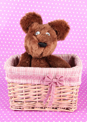 Beautiful basket with toy
