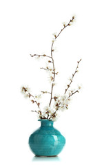Flowering branches in vase isolated on white