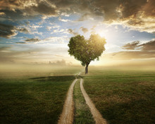 "Постер, картина, фотообои ""Love Tree"""