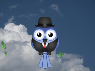 Comical Businessman bird sat on a tree branch