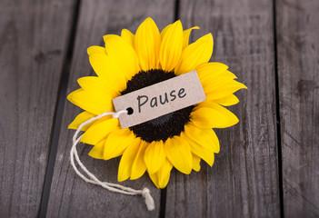 mach mal pause