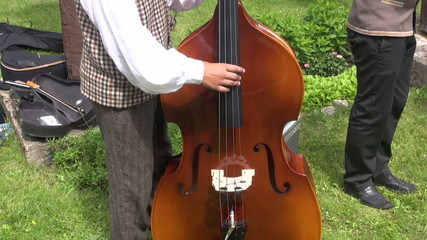 Musician playing with contrabass in summer agriculture fair