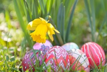 Bunte handbemalte Ostereier unter Narzissenblüte