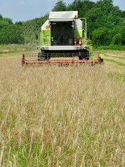Front view of combine harvester in the wheat field