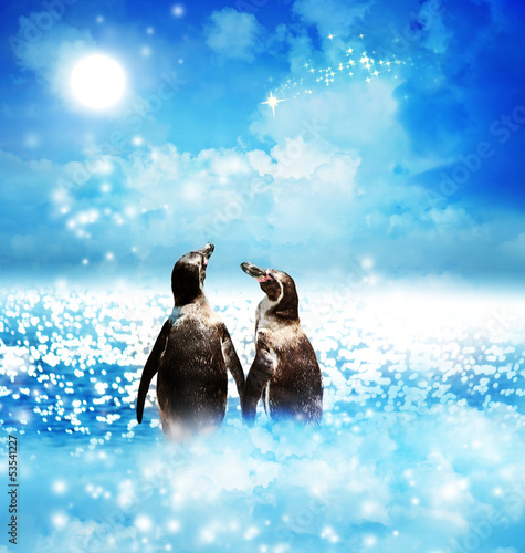 Penguin couple in night fantasy landscape