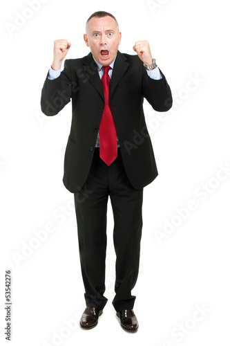 Successful businessman over a white background