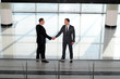 two young businessman handshake
