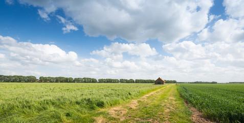 Old barn in a rural landscape