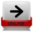 Online Button grau weiss  #130621-svg06